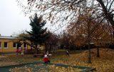 foto školní zahrada